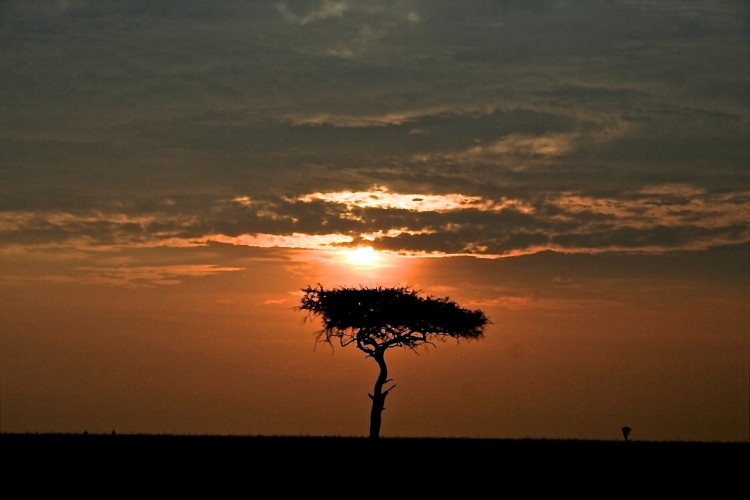sunset-in-kenya